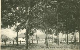 Malay Malaysia, KUALA LUMPUR, Para Rubber Plantation (1910s) Postcard - Malaysia