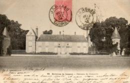 - Environs De JARGEAU - Château De Chenaille  -20165- - Jargeau