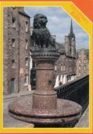 Postcard Greyfriars Bobby Old Town Edinburgh [ Skye Terrier ] My Ref  B23724 - Midlothian/ Edinburgh