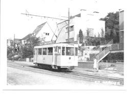 Leuven - Tram Stadslijn 1. - Leuven