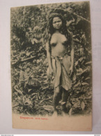 C.P.A. - Ethnique - Asie - Singapore - Wild Sakey , Seins Nus - 1907 - SPL (54) - Singapore