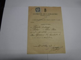 MARCA COMUNALE  -- FISCALE  ---     CAMAIORE  -- LUCCA  ---   L. 0,20 - 1900-44 Vittorio Emanuele III