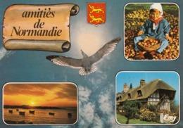 Cp , 14 , NORMANDIE PITTORESQUE , Amitiés De Normandie - Autres Communes