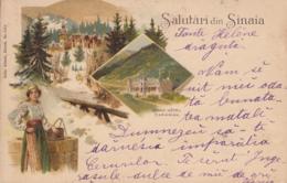 Old Postcard Sinaia - Roumanie