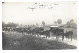 SAINT JULIEN EN VERCORS (26) Carte Photo Congrès 1919 Attelages - Altri Comuni