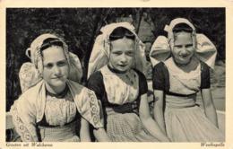 R212853 Groeten Uit Walcheren. Westkapelle. S. Gabrielse. 1951 - Postkaarten
