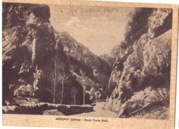 1940 MEDUNO (PORDENONE ALL'EPOCA UDINE) PASSO PONTE RACLI --- Q1874 - Pordenone