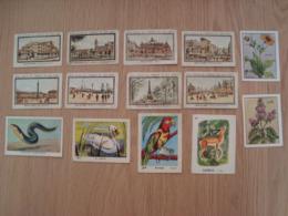 LOT DE 14 BONS POINTS LION NOIR ET EDITIONS EDUCATIVES - Documentos Antiguos