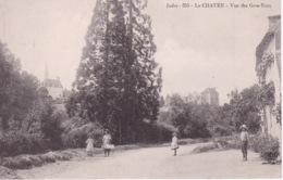 LA CHATRE(ARBRE) - La Chatre