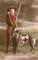 Scout De La Croix Rouge Tenant Un Chien Ambulancier - Cruz Roja