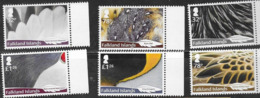 FALKLAND ISLANDS, 2019, MNH,  BIRDS, FEATHERS, 6v - Birds