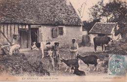 45 Jargeau En Sologne Coin De Ferme Vache Chevre Cochon Chien Paysans Berger Goat Folklore Metier Campagne Canne Peche - Jargeau