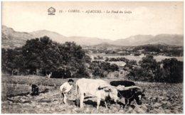 20 AJACCIO - Le Fond Du Golfe (laboureur) - Ajaccio