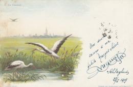 CARTE ALSACE STRASBOURG. THEO HAAS. A MA PETITE MARGOT CHERIE.  SCHILTIGHEIM 1919. TRESOR ET POSTES - Andere Illustrators