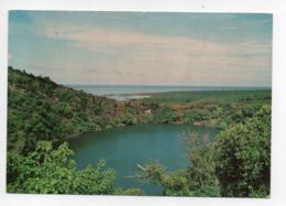 Comores: Grande Comore, Le Lac Sale, Timbre Coquillage Nerita Polita (19-1765) - Comores