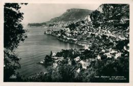 Monaco  Vue Générale De La Principauté Ed CAP - Monaco