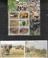 MALAWI , 2019, MNH,  MALAWI WILDLIFE, LIONS, RHINOS, ELEPHANTS, LEOPARDS, BUFFALO, HIPPOS, SHEETLET + 6 S/SHEETS - Big Cats (cats Of Prey)