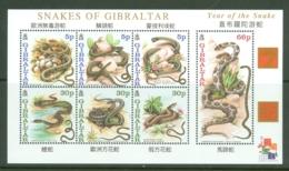 Gibraltar: 2001   Snakes   M/S  MNH - Gibilterra