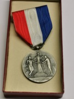 Luxembourg Médaille, Mutualité Luxembourgeois, Argent - Tokens & Medals