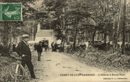 FORET DE CHATEAUROUX L'ALLEE DE LA BONNE DAME - Chateauroux