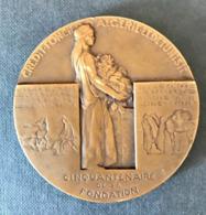 Algeria, Médaille, Crédit Foncier D'Algérie Et De Tunisie, 1930, Dautel, TTB - Tokens & Medals