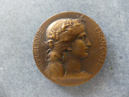 Médaille D'honneur Au Travail. Union Syndicale Et Fraternelle Des Maîtres Tailleurs De Paris. Médaille En Bronze - Professionnels / De Société