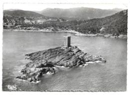 Cpsm 83 Environs De St-Raphaël - L'île D'Or - Camp International Du Dramont - Autres Communes