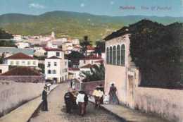 Portugal - Madeira - View Of Funchal - Pas Circulé - Animée - TBE - Madeira