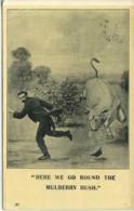 COMICS - LIVING PICTURE COMIC 1905 Com377 - Comics