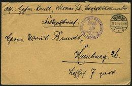 1915, MECKLENBURG SCHWERIN WAPPEN IN VIOLETTEM STPL. HAUPTMELDE-AMT WISMAR BRIEF - Ocupación 1914 – 18