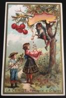Fresnes Nord Chicorée Legrand Baboye Superbe Chromo Laas Cerisier Cerises Récolte Enfants - Chromos