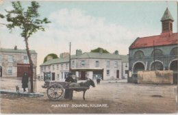 Irlande  Kildare  Market Square   Attelage Avec âne. - Kildare