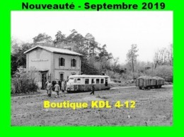 AL 595 - Autorail Billard A 80 D - Gare De FONTENEILLES-LE COUDRAY - Commune De SOUPPES SUR LE LOING - Bahnhöfe Mit Zügen