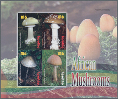 """Thematik: Pilze / Mushrooms: 2007, Lesotho. Imperforate Miniature Sheet Of 4 For The """"Mushrooms From - Pilze"""