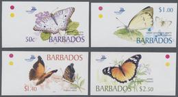 Barbados: 2005, Butterflies Complete IMPERFORATE Set Of Four (Anartia Jatrophae, Ascia Monuste, Hist - Barbados (1966-...)