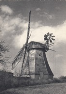 Postcard Windmuhle In Schleswig Holstein [ Windmill ] My Ref  B23739 - Mulini A Vento