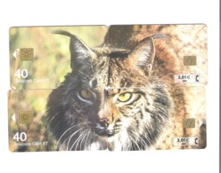 """PUZZLE OF 4 CHIPCARD PORTUGAL/SPAIN """" LYNX PARDINA """"-  EX: 5.000 - NEW/NOT USED - Portugal"""