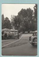 "Borsbeek : Foto ""In Het Tyrolerhof"" - Borsbeek"