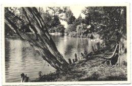 Groot-Bijgaarden - De Vijver - Dilbeek