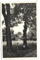 Groot-Bijgaarden - Zicht Op De Ingang - Dilbeek