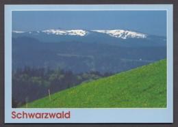 Schwarzwald-Idylle - Schneebedeckte Berge - Germany