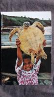 CPSM TORTUE RETOUR DE PECHE SUR LA PLAGE DE ST MAURICE ED REGE NOUVELLE CALEDONIE - Schildpadden