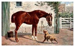 Horse , Hunter - Horses