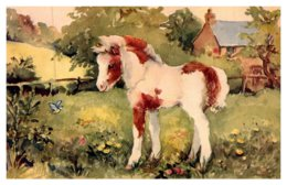 Horse , Foal And Bluetits - Horses
