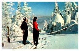 Snow Sking - Winter Sports