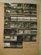 33 PROVINI FOTO SU FOGLIO 1949 PIAMPALUDO CONTADINI MUCCHE PAESAGGI PERSONE CASE E ALTRO - Places