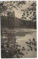 Forêt De Soignes - Auderghem - Les Etangs - Auderghem - Oudergem