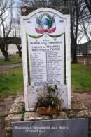 Bédarieux (34)- Monument Aux Morts (Edition à Tirage Limité) - Bedarieux