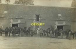 Guerre 14-18, 36ème D'Artillerie, Carte Photo De Chevaux Et Servants Cantonnés Dans Une Ferme, Septembre 1915 - Oorlog 1914-18