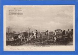 74 HAUTE SAVOIE - DOUVAINE Premiers Labours - Douvaine